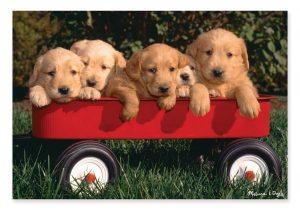 8945_100pc Puzzle-Puppy Wagon-puzzle label_O