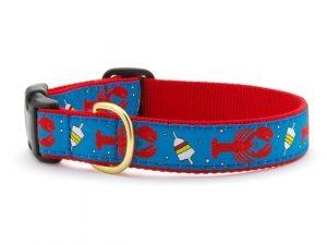 Regatta-lobster-buoy-dog-collar-633x475