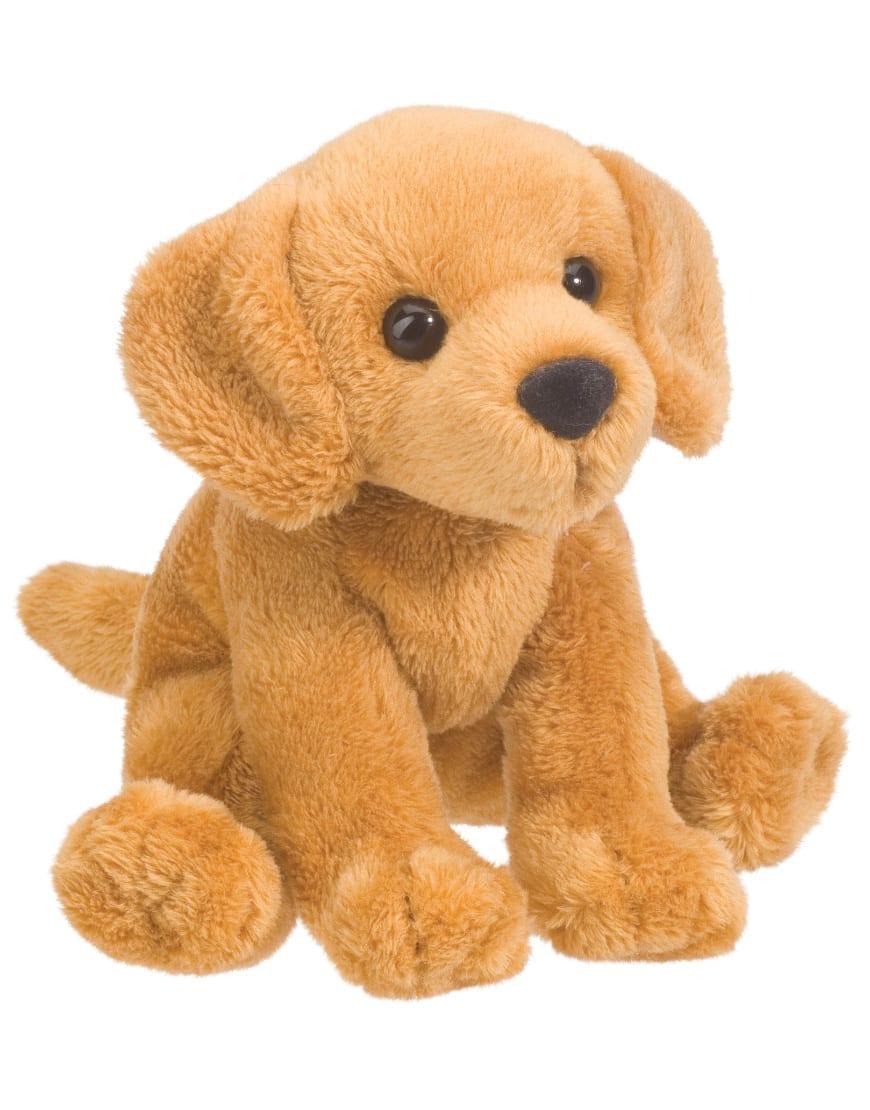 Gracie The Golden Puppy Yankee Golden Retriever Rescue Inc